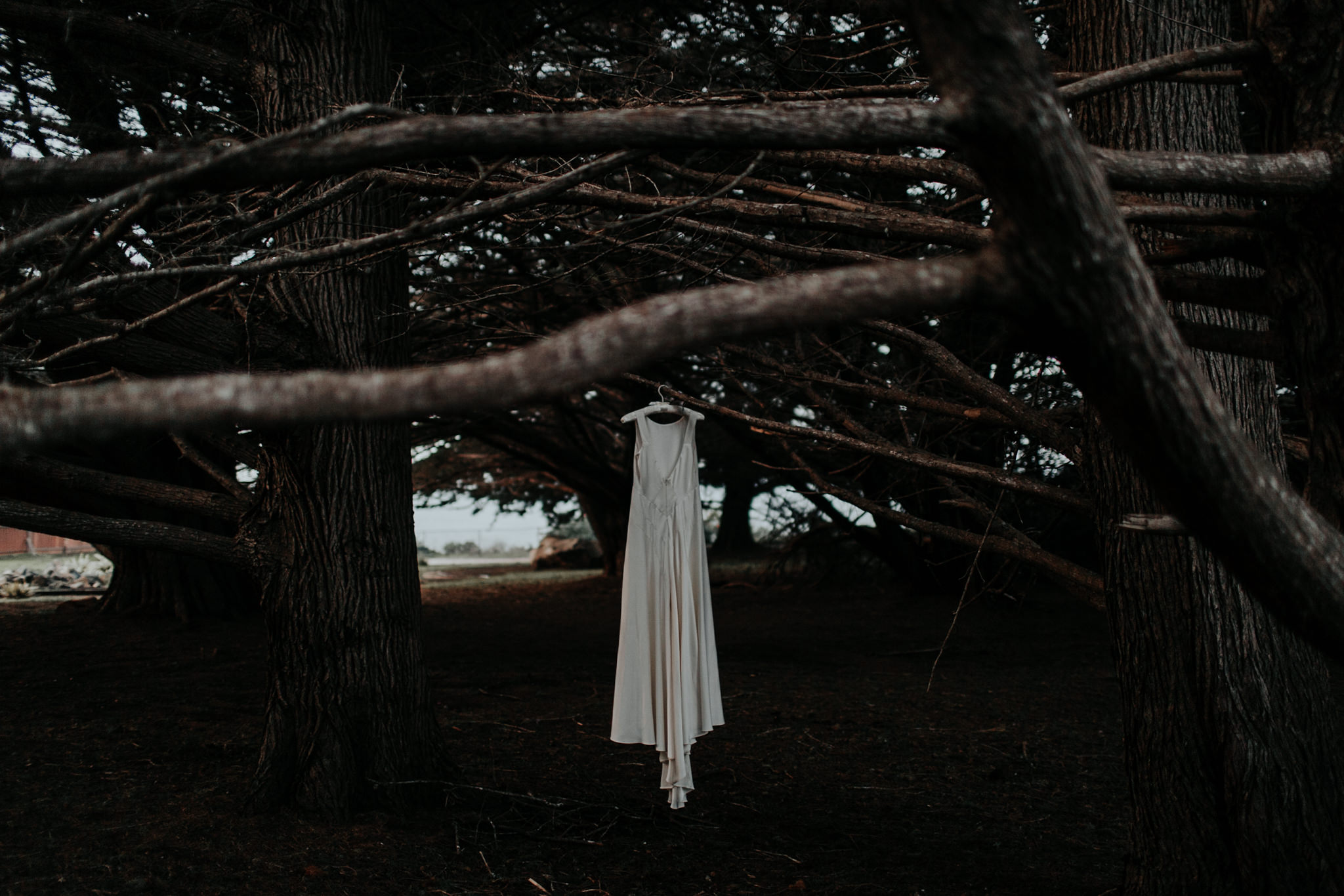 moody wedding dress hanging in trees forest ragged point winter
