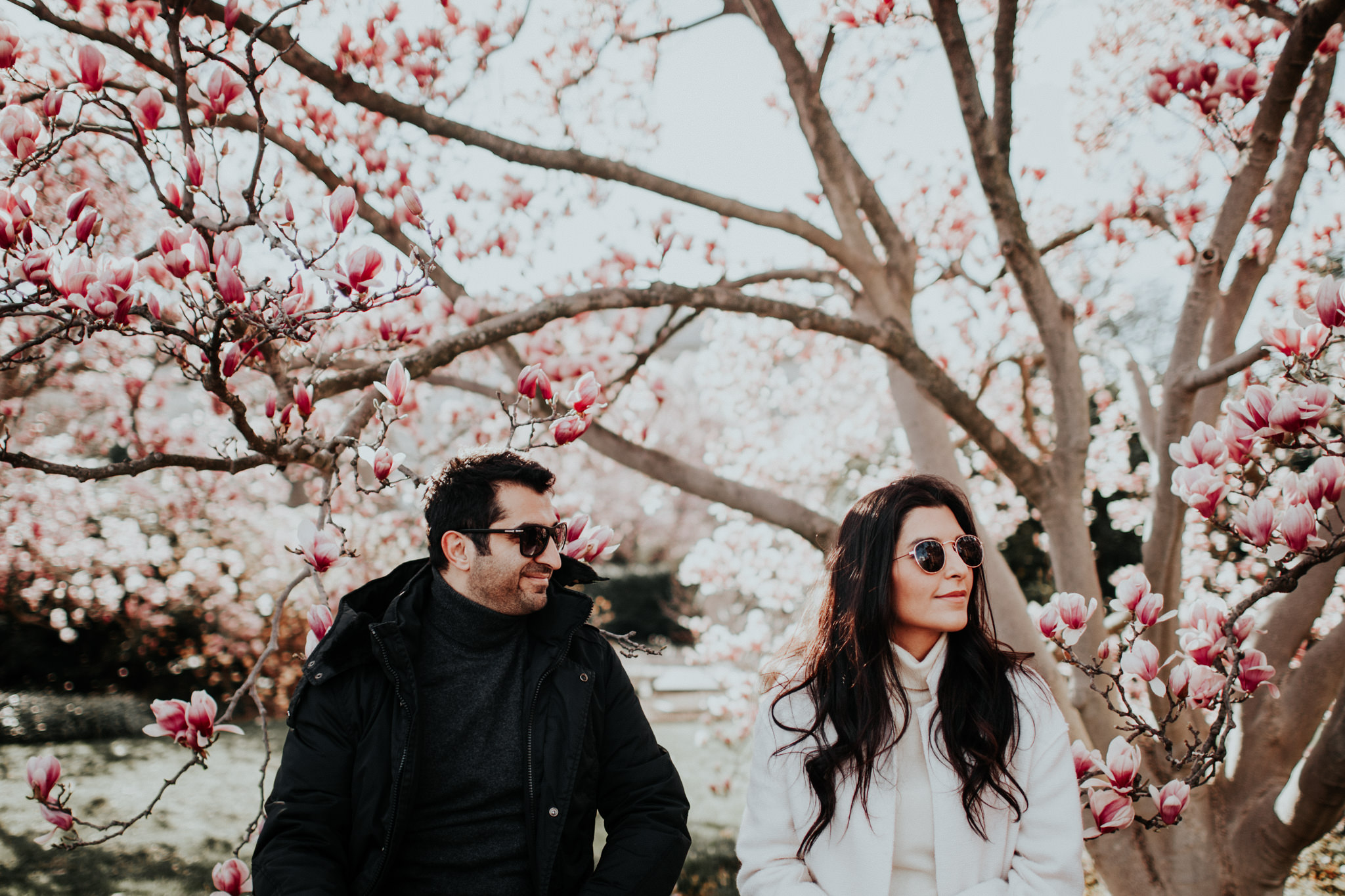 sunglasses couple cherry blossoms dc washington dc