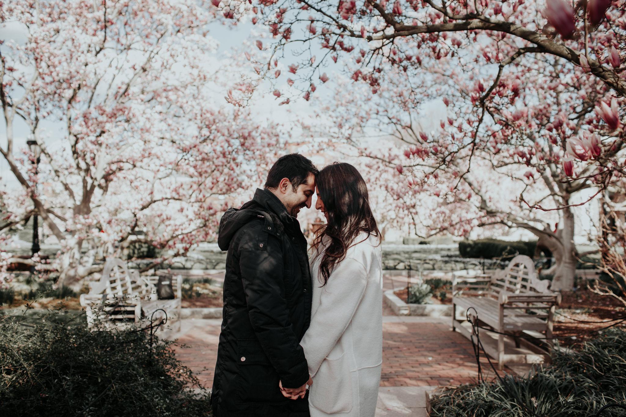 romantic cherry blossom engagement photo washington dc